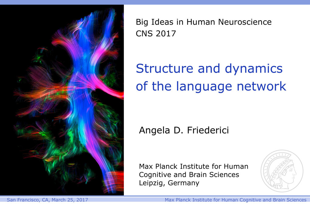 Professor Angela D. Friederici discusses the structures in the brain that make human language unique and possible.March 25, 2017Cognitive Neuroscience Society annual conference, San Francisco
